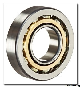 65 mm x 100 mm x 18 mm  FAG HCS7013-C-T-P4S angular contact ball bearings