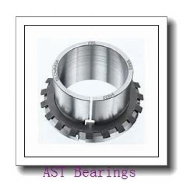 AST AST50 60IB48 plain bearings