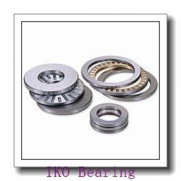 6 mm x 17 mm x 10 mm  IKO NAF 61710 needle roller bearings